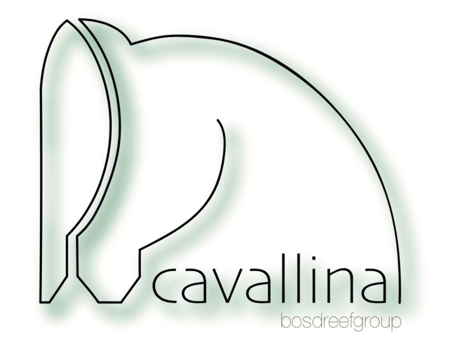 Logo Cavallina footer